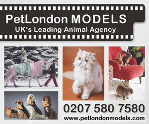 Animals Pet London (Animal Models for Film & Television)