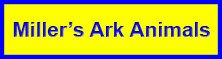 Miller's Ark Animals Logo