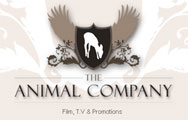 Animal Company Animals for Film & TV Logo