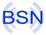 BSN Group Logo