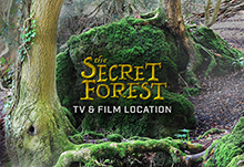 Secret Forest TV Movie Location